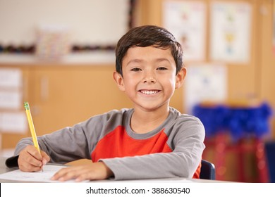 Portrait of a boy at elementary school sitting in classroom