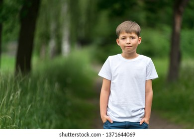 Portrait of a boy on a background of nature.