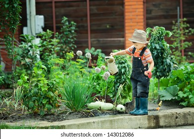 Portrait of a boy working in the garden in holiday