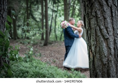 Portrait of bride and groom in forest. Wedding photo of newlyweds in forest.