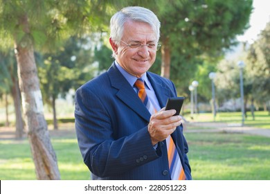 Portrait of a businessman checking his phone