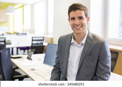Portrait of Businessman in modern office. looking camera