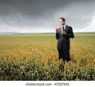 Portrait of a businessman smoking a cigarette on a cornfield