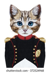 Portrait of Cat in military uniform.  Hand-drawn illustration, digitally colored.