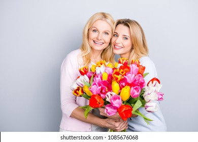 Portrait of charming pretty attractive mother and daughter having big bouquet of colorful aromatic tulips looking at camera bonding isolated on grey background