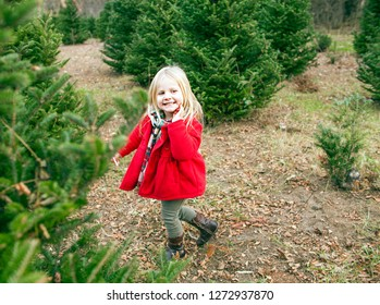 Portrait of cheerful little girl walking outside. Cute girl among fir trees outdoors