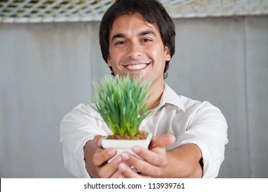 Portrait of cheerful young man holding small plant