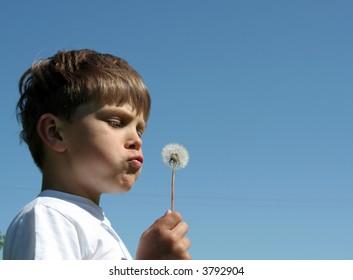 A portrait of a child blowing dandelion seeds