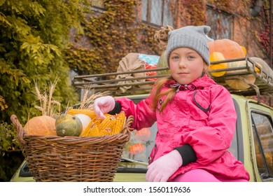 Portrait of a child next to a basket with millet corn and pumpkins. A child sits on the hood of a car and holds a small pumpkin in his hands. Little girl sells agricultural crops at the autumn fair.