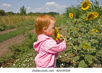 Portrait of child in sunflower field