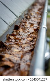 A portrait of a clogged gutter full of autumn leaves, dirt and water which cannot get away hanging next to a slate roof. A typical chore after autumn is to clean the roof gutter.
