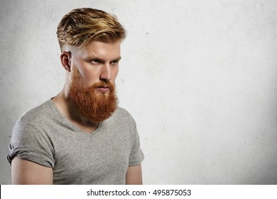 Portrait of courageous and fashionable male model with long trendy beard and undercut hairstyle. Caucasian blond man in grey T-shirt looking sullenly ahead of him. Indoors shot on white background.