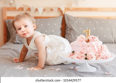 First Birthday Images Stock Photos Vectors Shutterstock