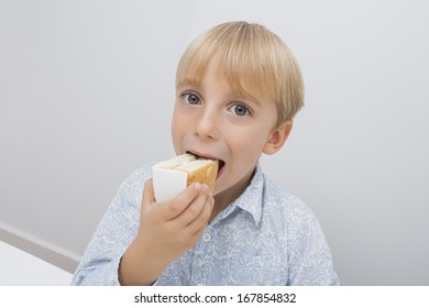 Portrait of cute boy eating cake slice in house
