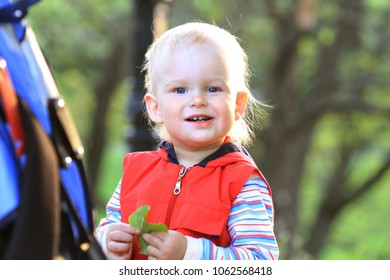 Portrait of a cute boy outdoors in a park.