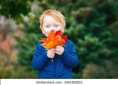 Portrait of cute funny adorable smiling Caucasian red-haired boy with blue eyes holding autumn fall leaves in park