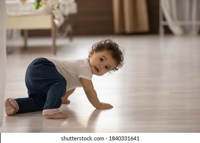 Portrait of cute little african American baby toddler crawl make first steps on home wooden floor. Small biracial newborn infant child learn walking play indoors. Childcare, upbringing concept.