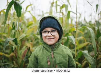 Portrait of cute little boy in glasses in the cornfield smiling