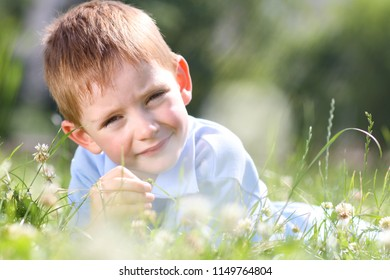 Portrait of cute little boy in the grass, summer park outdoors