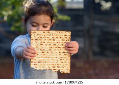 Portrait of the cute little girl holding matzah. Jewish child eating matzo (unleavened bread)  in Jewish holidays Passover.