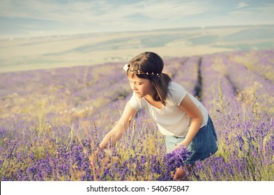 Portrait of a cute little girl in a lavender field