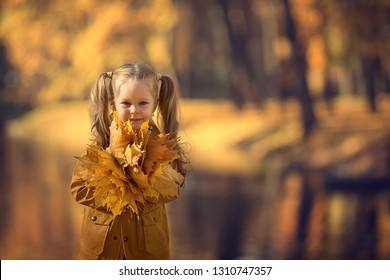 Portrait of a cute little girl walking in a beautiful golden autumn park playing with leaves. Image with selective focus and toning.