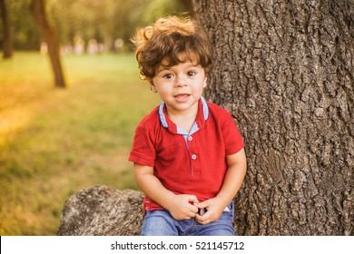 Portrait of cute little toddler boy sitting under huge tree in summer park. Beautiful male child with gorgeous brunette curly hair playing alone outside on sunset time.