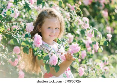 Portrait of a cute toddler girl outdoor in a rose garden smelling the flowers. Summer, Childhood.