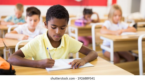 Portrait of diligent schoolboy sitting in class writing exercises
