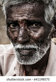 Portrait of elder Indian man with intense, deep look in his eyes, red bindi dot between them and white beard.