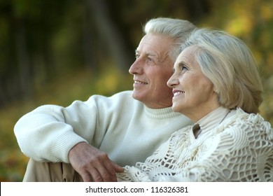 portrait of a elderly couple sitting in autumn park