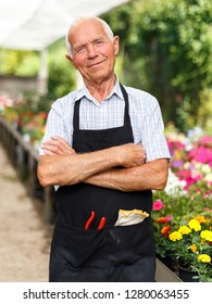 Portrait of elderly man florist standing in sunny greenhouse full of flowers