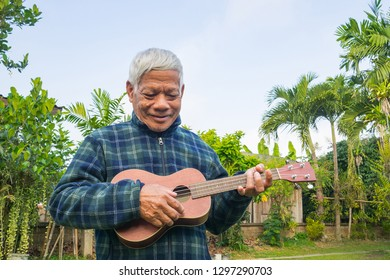 Portrait of elderly man playing ukulele in the garden. The music and musical instrument makes very happy old man and good mental health. Health care concept