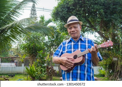Portrait of elderly man playing ukulele in his garden. Relaxing by singing and playing small guitar happy and enjoy life after retired. People and relaxation concept