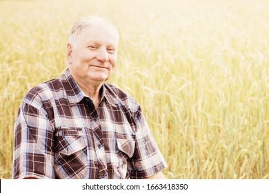 portrait elderly man in summer field