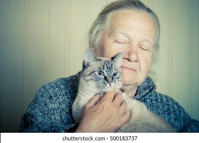 Portrait of an elderly woman with cat on a light background. Toned.