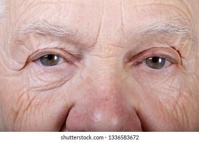 Portrait of elderly woman. Closeup view.