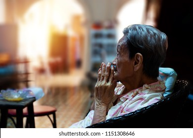 Portrait of a elderly woman pressing hands together in sign of respect to Buddha  praying in peaceful mind at home with sunlight blurred background. 90 up of healthy old woman praying,side view.