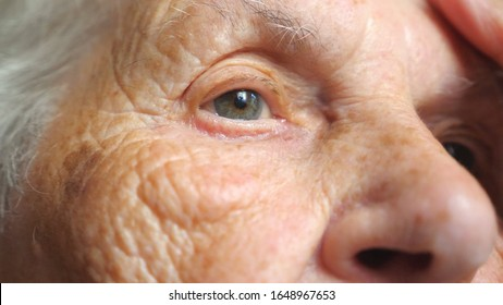 Portrait of elderly woman watching pensive to something. Close up of female face with wrinkles. Grandmother looking calmly into distance showing emotions of sad or loneliness. Detail view Slow motion