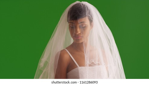 Portrait of elegant bride posing with veil covering face on green screen