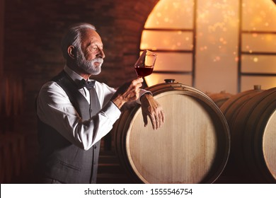 Portrait of elegant handsome sommelier man visually examining a glass of wine at a wine cellar. He's standing next to a row of wooden casks. Holding the wineglass by its foot and looking it.