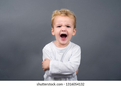 Portrait of European little boy with blond hair screaming with wide opened mouth   having unhappy and aggressive expression. Standing against gray studio background.