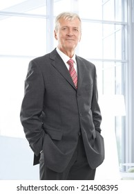 Portrait of executive chairman standing at office. Business people.
