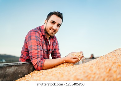 Portrait of farmer with corn, smiling man harvesting