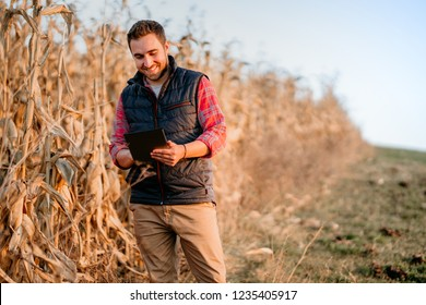 portrait of farmer using tablet in everyday life. atumn harvest with farmer