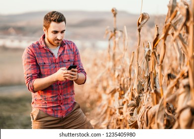 Portrait of farmer using technology, young farmer using smartphone in agriculture