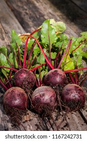 portrait of five beetroot on wooden surface