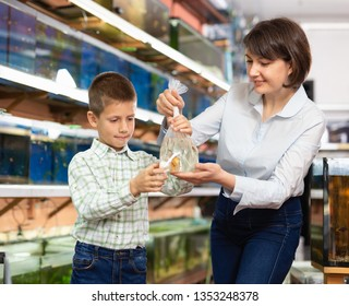 Portrait of friendly family of mother and preteen boy buying goldfish for home aquarium in petshop
