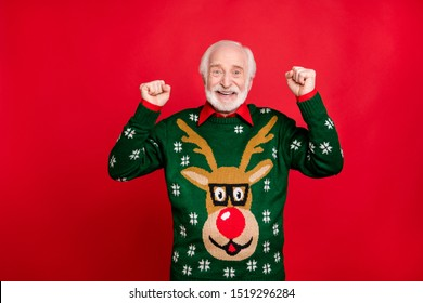Portrait of  funny funky grey-hair old man raise fists scream yes win christmas lottery on newyear x-mas theme party masquerade wear pullover with deer decor ornament isolated  red color background