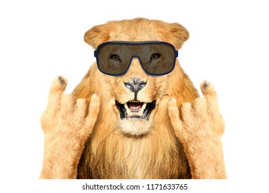Portrait of a funny lion in sunglasses, showing a rock gesture, isolated on white background